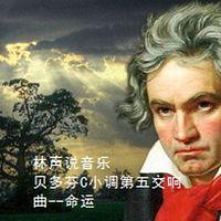 林声说音乐--贝多芬C小调第五交响曲--命运