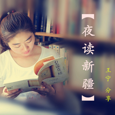 《夜读新疆》王宁