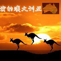 我的澳大利亚之袋鼠旅行家
