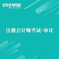 注册会计师——内部审计培训教程