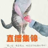 盘丝洞夜话-直播集锦