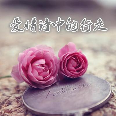 爱情诗中的行走