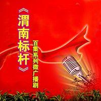 《渭南标杆》百集系列微广播剧
