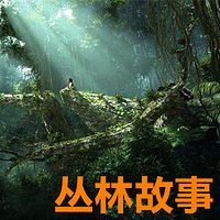 【晓月讲名著】《丛林故事》