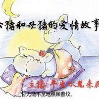 公猪和母猪的故事
