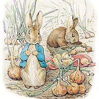 布鲁童音—坏兔子的故事