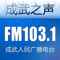 成武人民广播电台