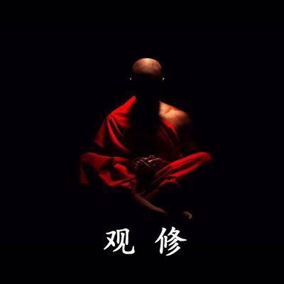 《前行》观修法师辅导 带修(2015)