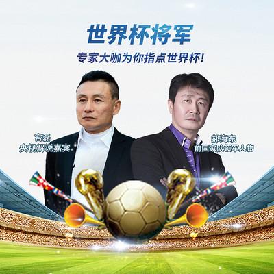世界杯将军