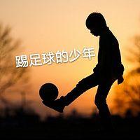 布鲁童音—踢足球的少年