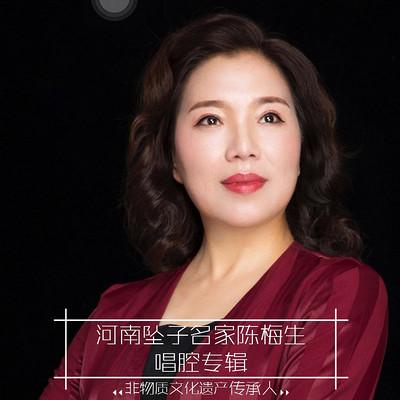 河南坠子名家 陈梅生唱腔专辑