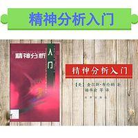 精神分析入门(专家精讲这本书)