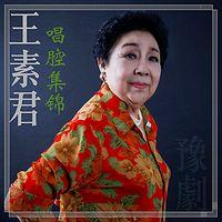 豫剧·王素君唱腔集锦1