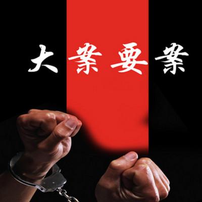 中国大案要案