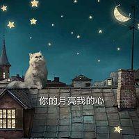 你的月亮我的心