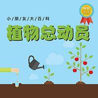 熊猫天天-植物总动员