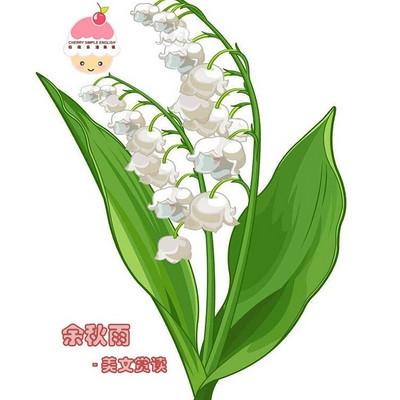 余秋雨-樱桃乐活夜读