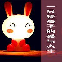 一只瓷兔子的爱与人生
