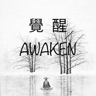 觉醒awaken