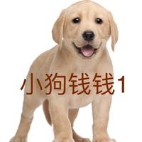 小狗钱钱1