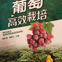 葡萄高效栽培