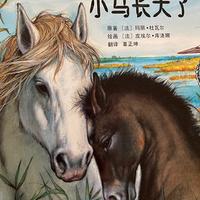 跟随小动物的足迹系列之小马长大了