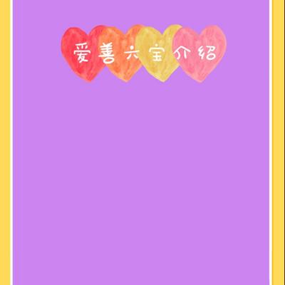 爱善六宝介绍