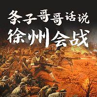条子哥哥话说徐州会战