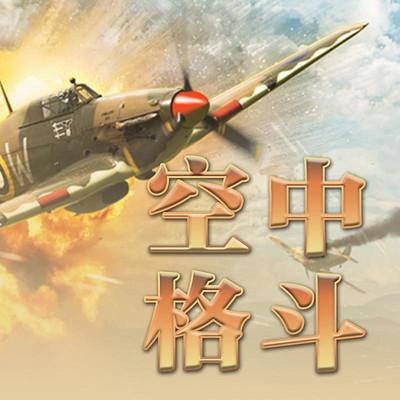 空中格斗【全集】