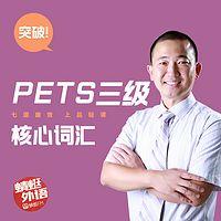 宋德伟:突破PETS三级核心词汇