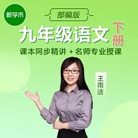 初中语文九年级下册部编版