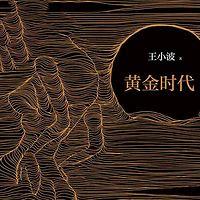 【王小波】黄金时代