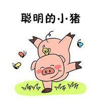 聪明的小猪