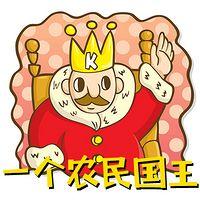 一个农民国王