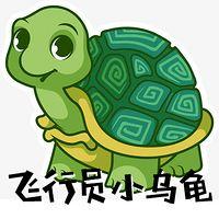 飞行员小乌龟