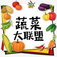 蔬菜大联盟