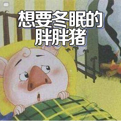 想要冬眠的胖胖猪