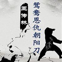 王传林评书:鸳鸯恩仇朝阳刀