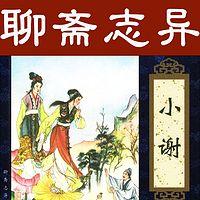 王传林评书:聊斋志异之小谢
