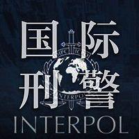 国际刑警【全集】(剪辑版)