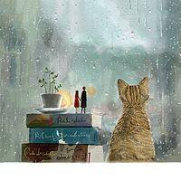 《枕边书,怀中猫》