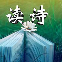 读诗 心灵之旅
