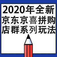 2020年京东拼购京喜店群系列课