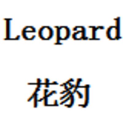 leopard 花豹的故事
