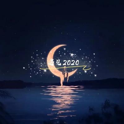 遇见2020