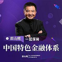 翟山鹰:探秘中国特色金融体系