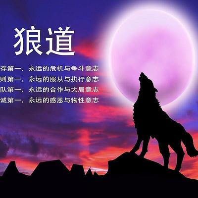 狼道生存智慧