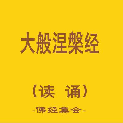 大般涅槃经(北本共40卷+两卷后分)