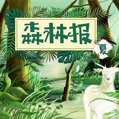 世界经典少儿科普名著:森林报夏