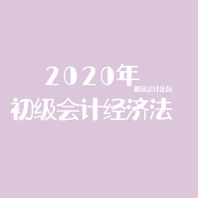 2020初级会计《经济法基础》